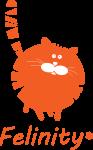 Felinity logo